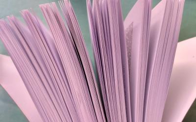 Publications et communications des membres du LIP